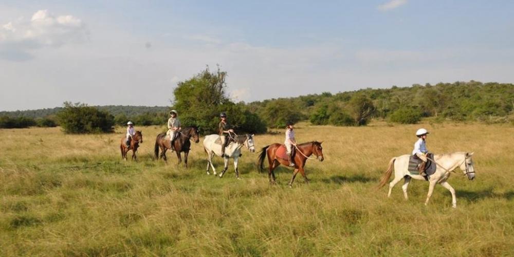 Horseback Riding in Lake Mburo National Park